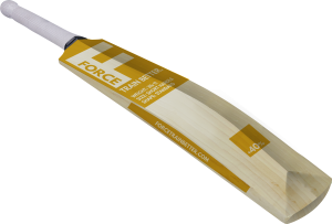 aero-force-weighted-cricket-bat-t-2