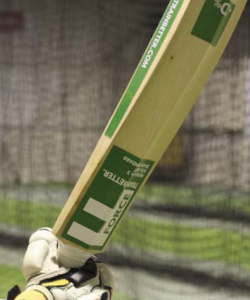 weighted=cricket-bat-force-t-2